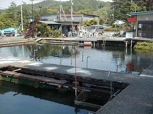 松葉バーベキュー 富士見つりぼり image