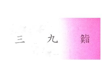三九鮨 image