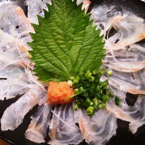 えごた(エゴタ) - 江古田 - 東京都(割烹・料亭・小料理,和食全般)-gooグルメ&料理