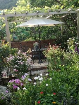 菜園 image