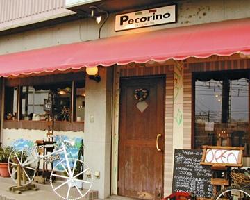 イタリア料理 ペコリーノ image