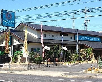 ベビーフェイスプラネッツ名古屋緑店