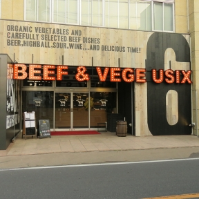 BEEF & VEGE USIX