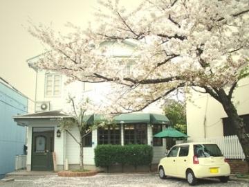 cafe 桜亭