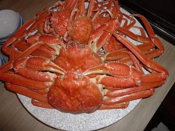 海鮮・会席料理 うを市