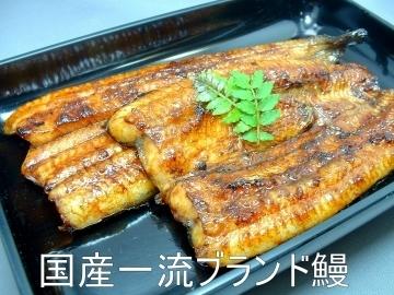 【温泉トラフグ・国産鰻】 みづ乃